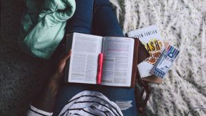 Best Study Abroad Programs at California